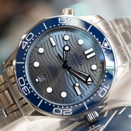 Omega Seamaster Diver 300M Omega Master Co-Axial Grey Dial 42 mm (รุ่นใหม่หน้าคลื่น)