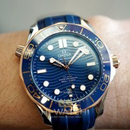 NEW!! Omega Seamaster Diver 300M Sedna™ Gold 18K Master Co-Axial Blue Dial 42 mm (NEW 01/2021)