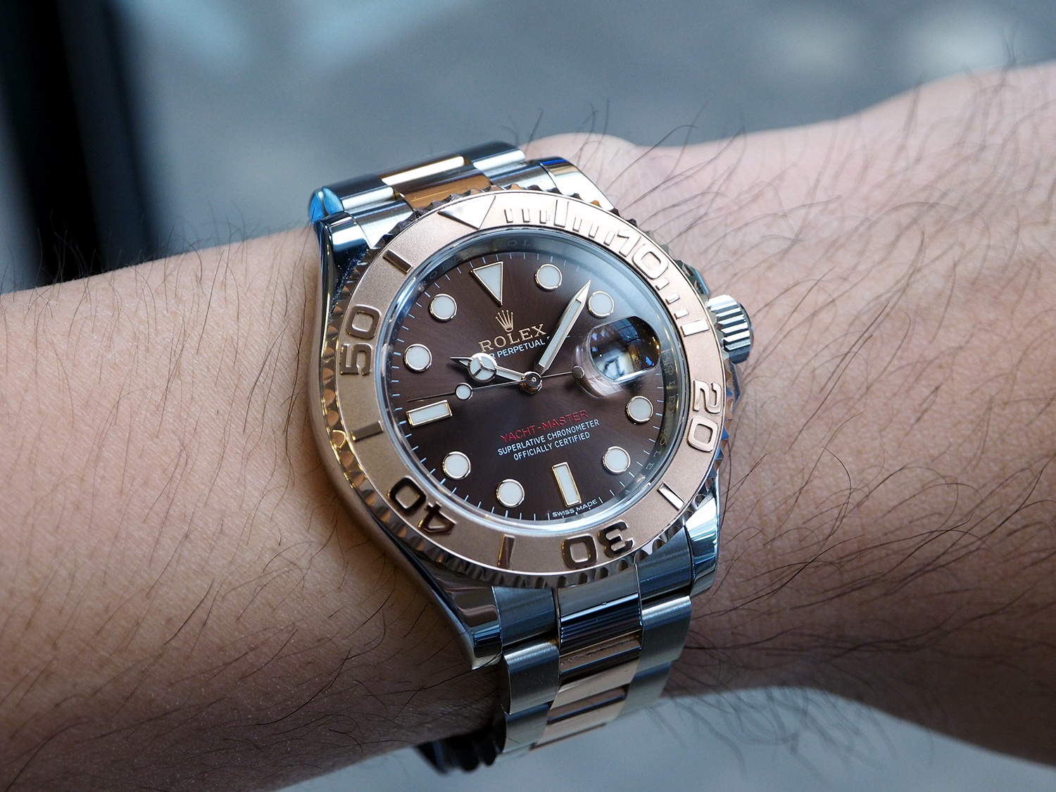 rolex yachtmaster 40 everose gold chocolate dial 40 mm